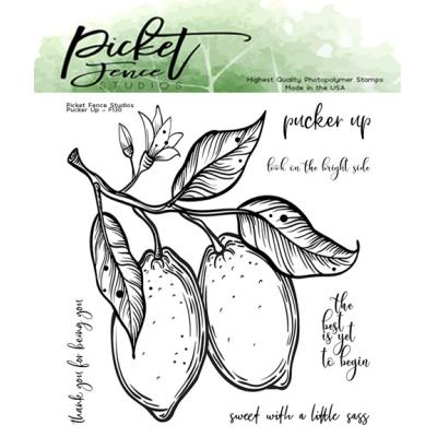 Picket Fence Studios Clear Stamps - Pucker Up