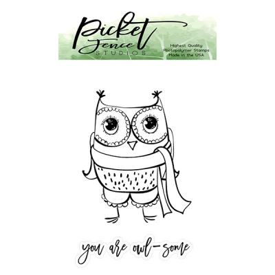 Picket Fence Studios Clear Stamps - Sweet Owl