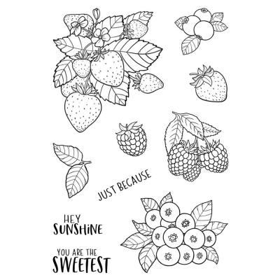 Jane's Doodles Clear Stamps - Berries