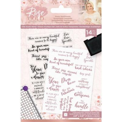 Crafter's Companion Rose Gold Clear Stamps - Sassy Sentiments