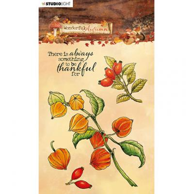StudioLight Wonderful Autumn Clear Stamps - Physalis