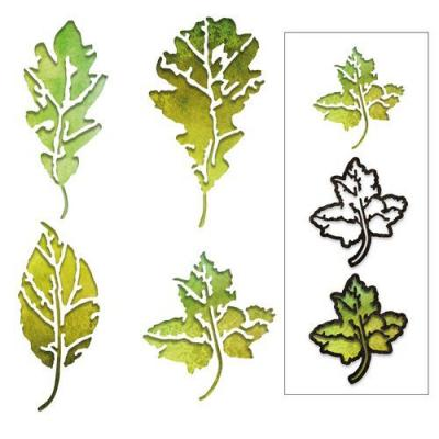 Sizzix Thinlits Die Set - Leaf Print