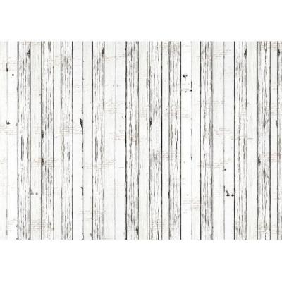 Asuka Studio Memory Place Forest Friends Wrapping Paper - Whitewash
