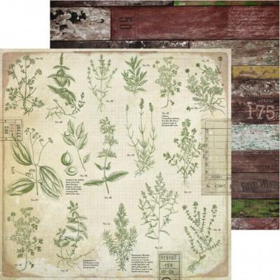 Kaisercraft Anthology Designpapier - Herbs